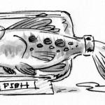 14 - fish bottle