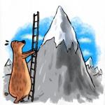 24-bear-mountain