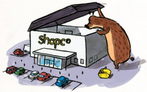The Great Big Bear Goes Shopping