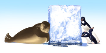 <font color=gray>Sealion and Penguins - Pearson publishing</font>