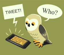 <font color=gray>Tweet Owl - Personal work</font>